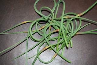 A Celtic knot of garlic scapes