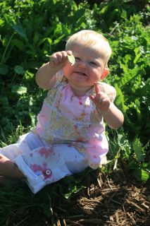My little sweet pea loves pod peas (Barbolian Fields photo)