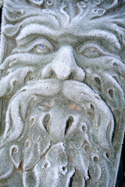 Green Man in Winter