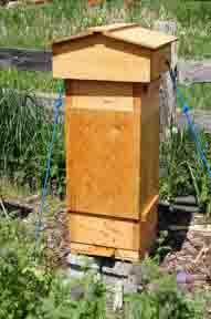 Swarm Box on Warre Hive