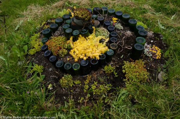 Sedum Spiral garden with bottles