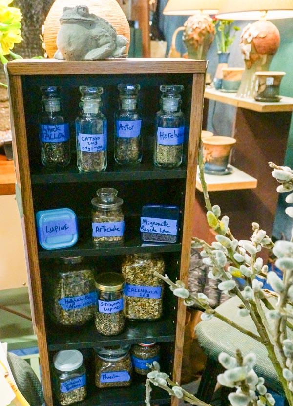 Seeds in Bottles