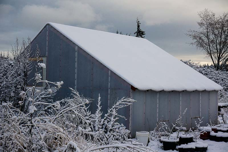 Greenhouse with Snow