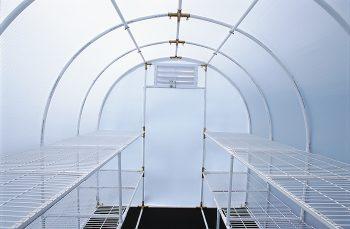 Inside view of Gardener's Oasis Solexx Greenhouse Kit