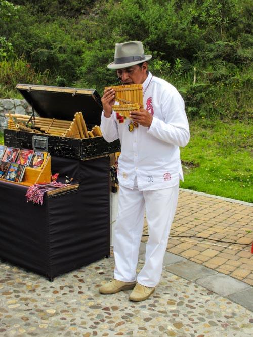 Pan Flute Musician