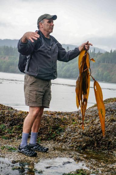 Mac with Giant Kelp