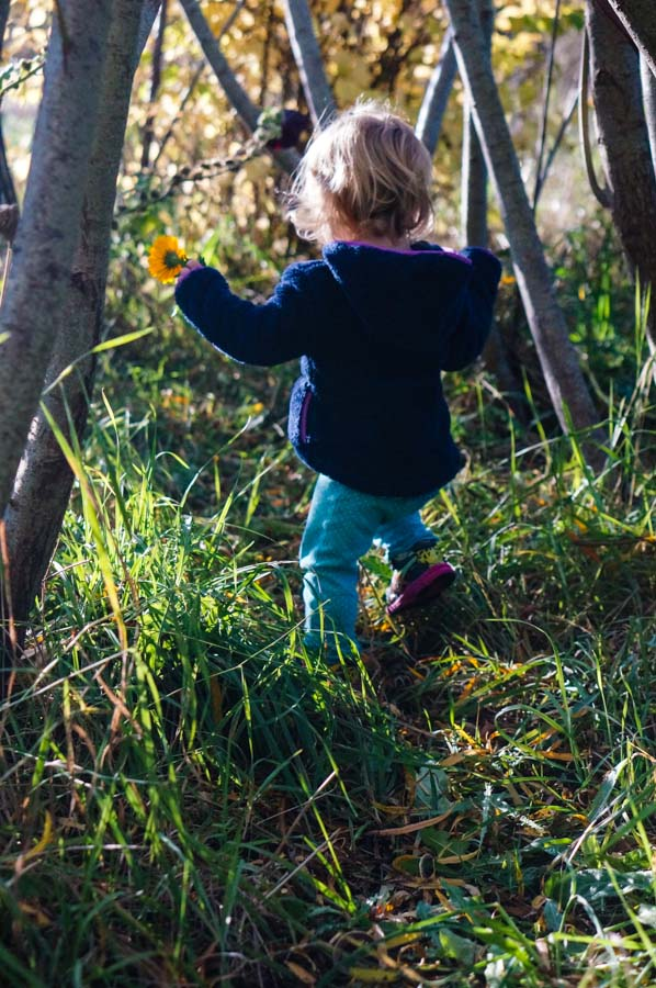 Toddler in the willows