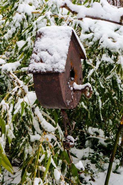 Snow-covered Birdhouse