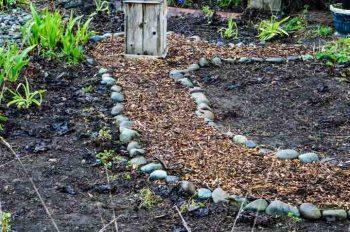 Side Garden Restoration