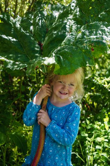 Rhubarb umbrella and kid
