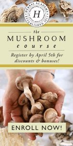 Mushroom Course through the Herbal Academy
