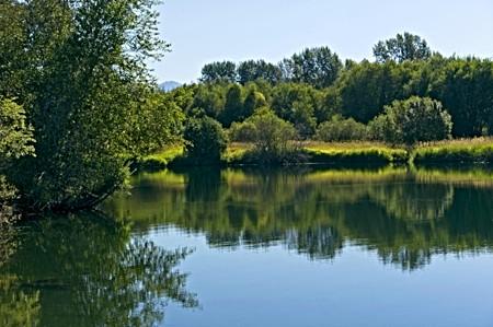 Quiet Lake_Montana