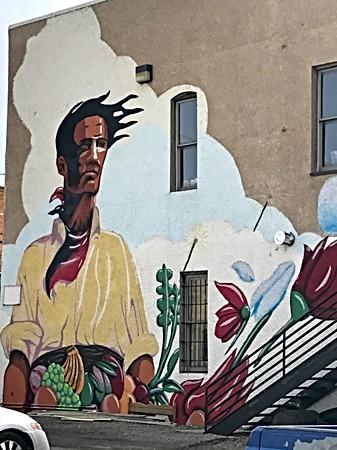 Wall Mural_Laramie WY