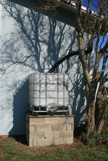 First rainwater tank installed in 2009. Corkscrew willow shadows on the building are cool.