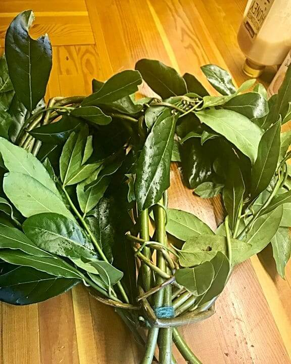 Adding bay leaves to the willow heart wreath