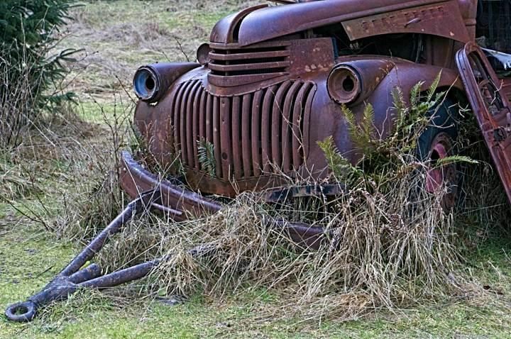 Rusty Old Truck, Kestner Homestead, Quinault Rainforest