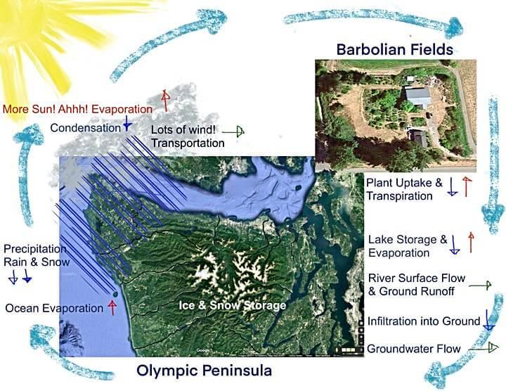 Hydrological Cycle - PNW Left Coast version on the Olympic Peninsula, Washington State