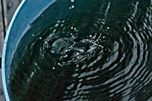 Rainwater dripping in rain barrel