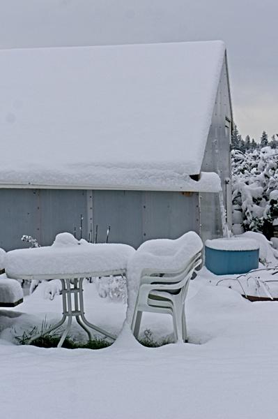 Winter Greenhouse under snow