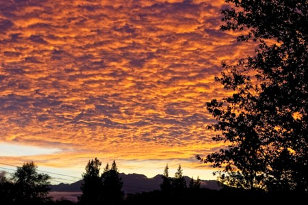 Incredible Sunset at Barbolian Fields, Sequim, WA